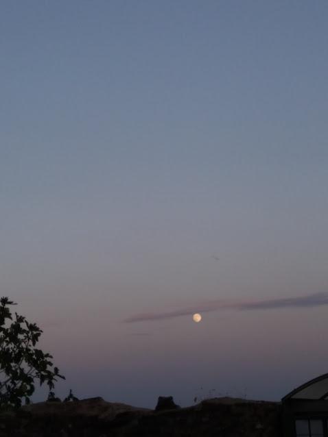 luna pienapiena